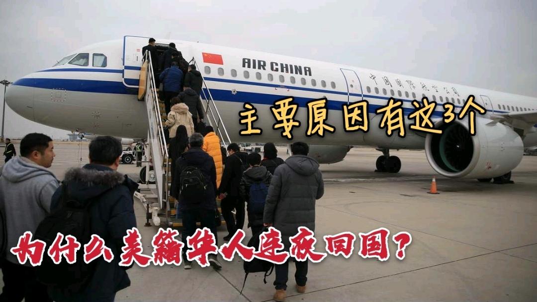 大批的美籍华人连夜回国?其实主要原因有3个,看完别吃惊!